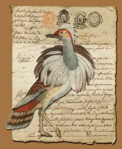 18th century rendition of a bustard.