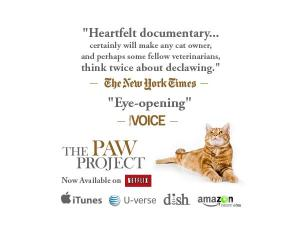 PAW PROJECT MOVIE