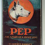über source of pit bull myths:  Pep,  The Story Of A Brave Dog