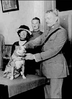 General Pershing decorates Stubby on behalf of the Washington Humane Education Society.