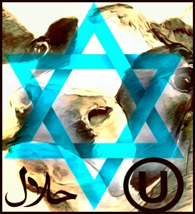Star of David and cow