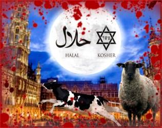 kosher halal