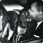 What animal advocates owe to the legacy of Martin Luther King Jr.