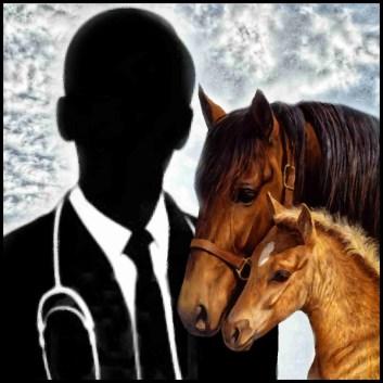 Black man & horses