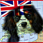 England Goes to the Dogs,  by Gavin Ehringer