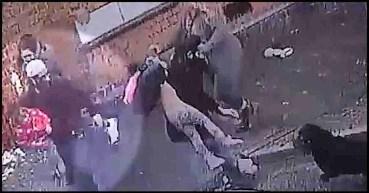 St. Saviour's Road Rottweiler attack