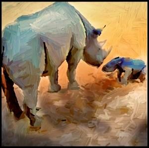 Newborn black rhino at Taronga Western Plains zoo Australia