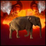 Did Namibia sell 170 elephants to China to make way for oil drilling?