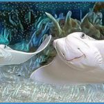 Cownose ray massacre, following shark-dragging,  outrages Floridians