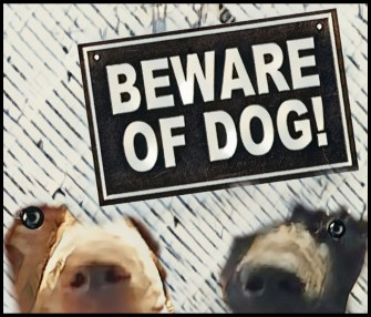 Two pit bulls and beware of dogs sign