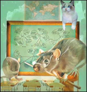 Mouse in classroom