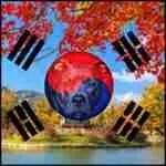 No more pit bull stunts putting children at risk, says South Korea