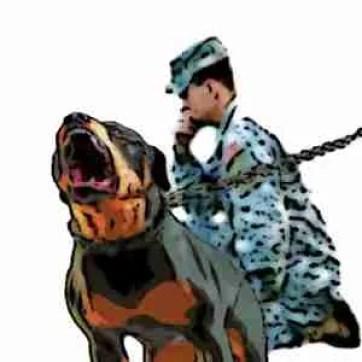 Soldier & Rottweiler