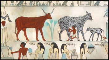 Egyptian cattle m,ural