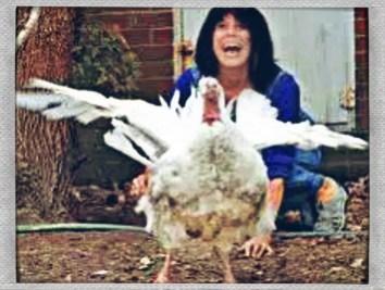 United Poultry Concerns founder Karen Davis with white domestic turkey. (UPC photo)