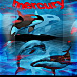 Mercury Toxicity as a Cause for Stranded Marine Mammals is not a Mystery