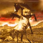 Wild horses on non-BLM land:  showdowns in the High Sierras