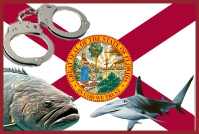 Florida Fish Wildlife Conservation Commission Acts Against
