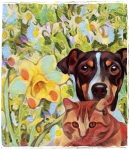 Dog & cat in flowers