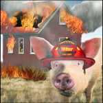 Barn fire with Wilbur the pig as a firefighter.