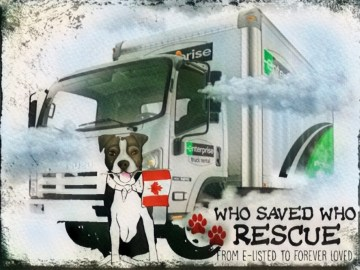 Who Saved Who Rescue