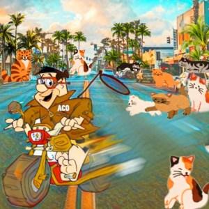 ACO Fred Flintstone on motorcycle leaving cats
