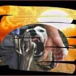 When pit bulls charge:  holding fire gets cops hurt 12 times more often