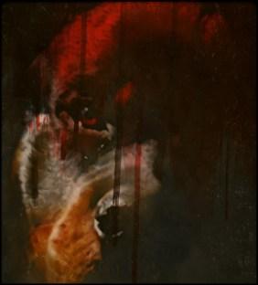 Bloody Rottweiler