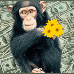 The Six Million Dollar Chimps