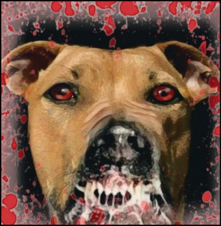 Rabid pit bull with foam and blood