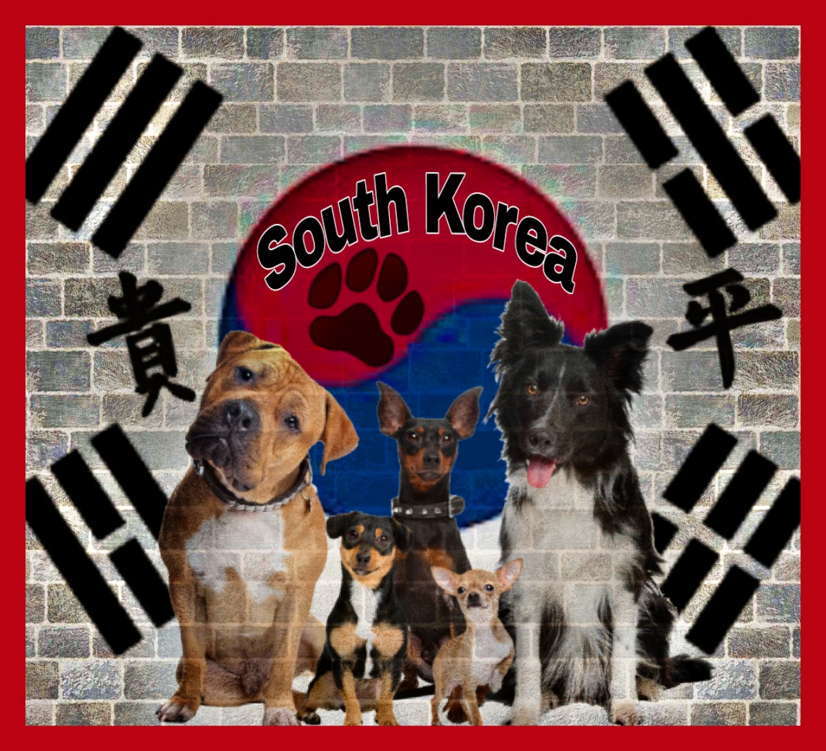 South Korean court rules that killing dogs for meat is