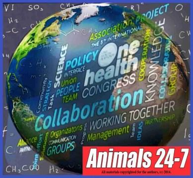 Animals 24-7