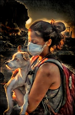 Animals Lebanon rescuer with dog after 2020 explosion