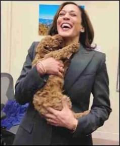 Kamala Harris with a poodle dog