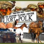 The Fort Polk horses: last stand of the U.S. cavalry