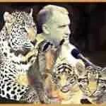 """We can still save them"":  wild cat conservationist Alan Rabinowitz, 65"