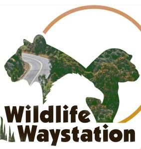 Waystation logo