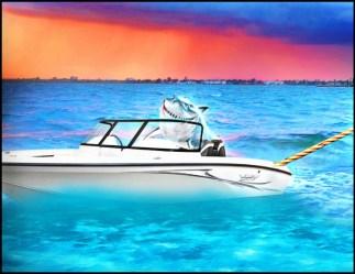Shark in speedboat