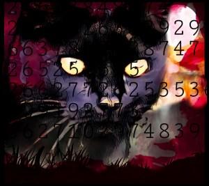 DC cat count