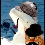 Mystery marine toxo host kills sea mammals; cats wrongly blamed