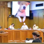 Springfield may become third city to vote on pit bull ban