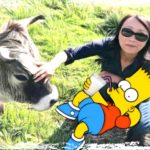 "Miyoko to dairy farmers:  ""Don't have a cow,   man!"""