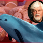 Why has Paul Watson asked 58 groups to drop a boycott of Mexican shrimp?