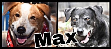 Max in stereo