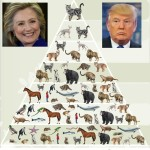 The animal issue that made Donald Trump a presidential candidate