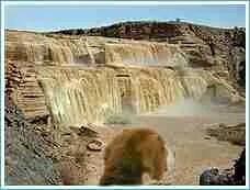 Dog surveys Great Falls (higher than Niagara Falls) on the Navajo Nation. (Beth Clifton collage)