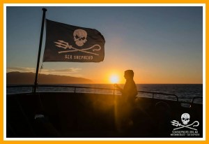 Sunrise aboard the Bob Barker. (Sea Shepherd photo)