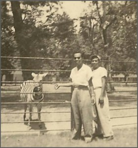 The Surabaya Zoo in 1953.