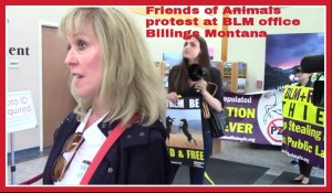 Foreground: Friends of Animals president Priscilla Feral. Background: FoA campaigns director Edita Birnkrant.