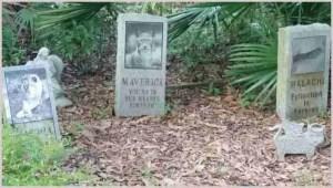 Graveyard at Big Cat Rescue. (Beth Clifton)